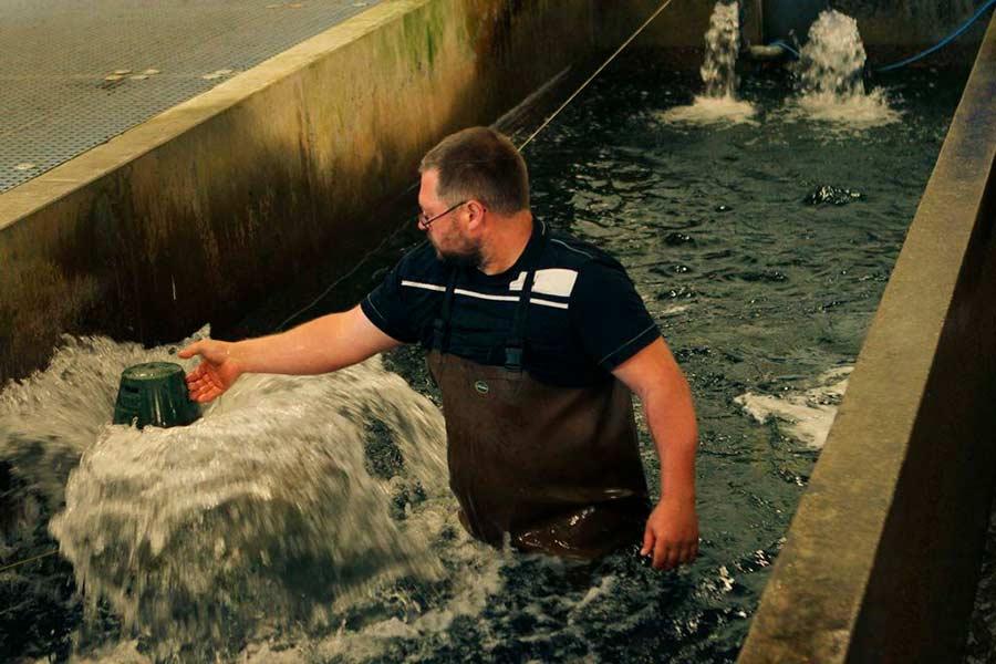 La Poissonnerie Beaume - Pêche en bassins intérieurs