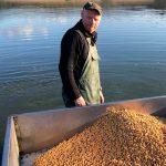 Nourrissage des poissons à la Pisciculture Beaume