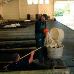 pêche en bassins couverts à la pisciculture Beaume
